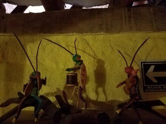 El Chapulim - the grasshopper