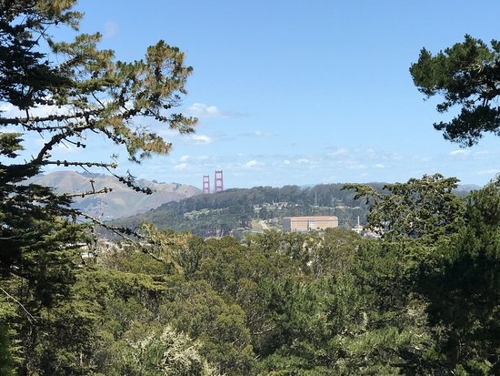 Strawberry Hill San Francisco All You Need To Know