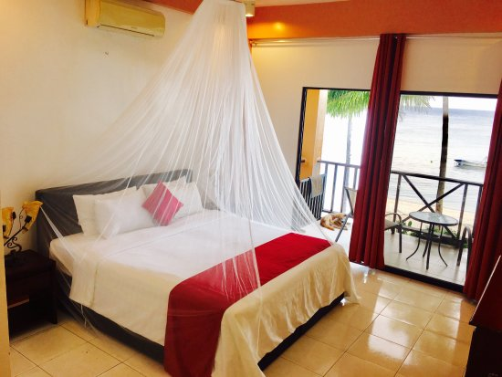 Anda White Beach Resort: Deluxe Room Beach Front