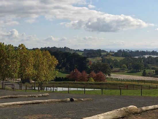Healesville, Australia: photo2.jpg