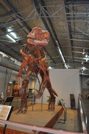 Hughenden, Australia: The kids love the life size skeletons