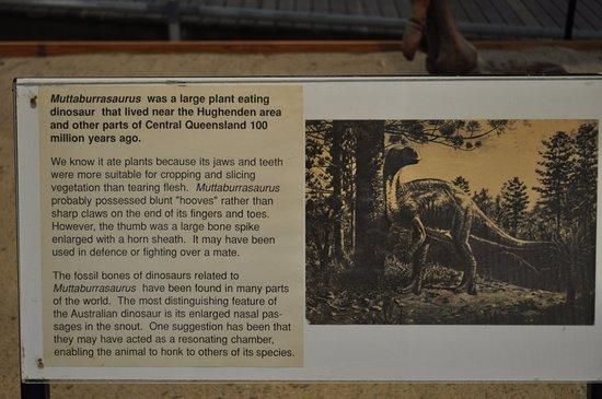Hughenden, Australia: Lots of interesting information boards
