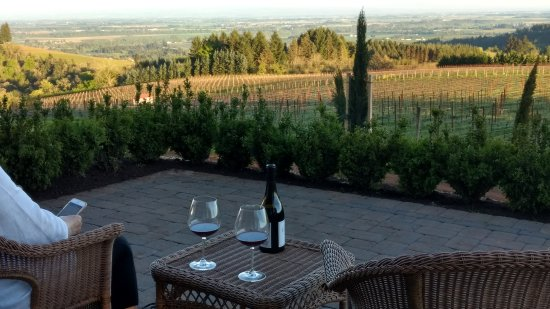 Black Walnut Inn & Vineyard : View from our patio of Willamette Valley