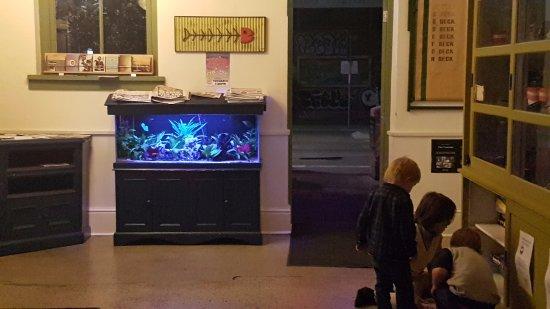 Clancy's Fish Pub Fremantle: Curious kids