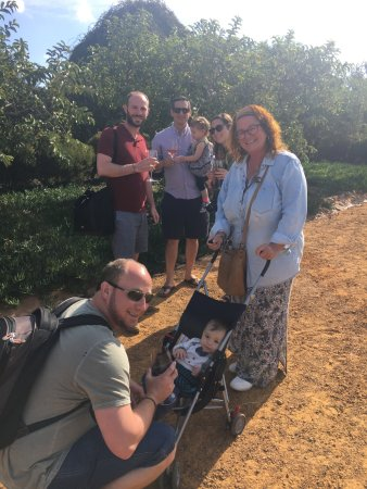 Amber Tours: Family stroll around the gardens at Babylonstoren after lunch at Babel
