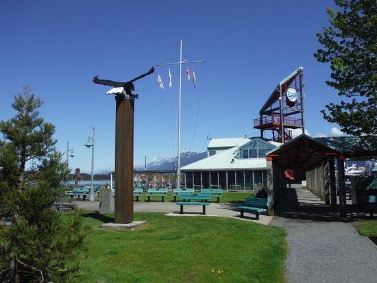 Порт-Алберни, Канада: TOWER CLOCK FROM PICNIC AREA