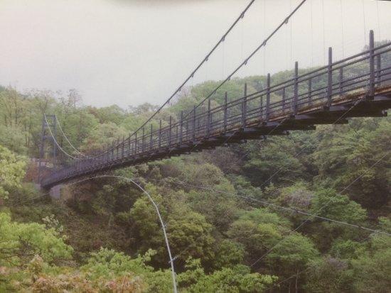 舌震の恋吊橋 - 奥出雲町、鬼の...