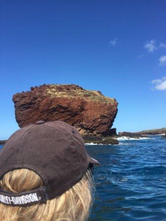 Hawaii Ocean Rafting : photo1.jpg