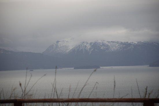 Clam Gulch, Αλάσκα: photo8.jpg