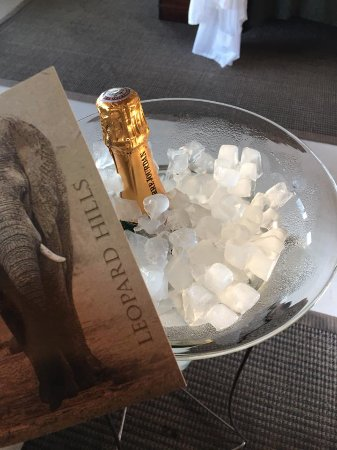 Leopard Hills Private Game Reserve, Sudáfrica: Bubbles upon arrival - we were spoiled rotten