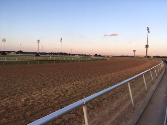 Lone Star Park: At the edge of the track