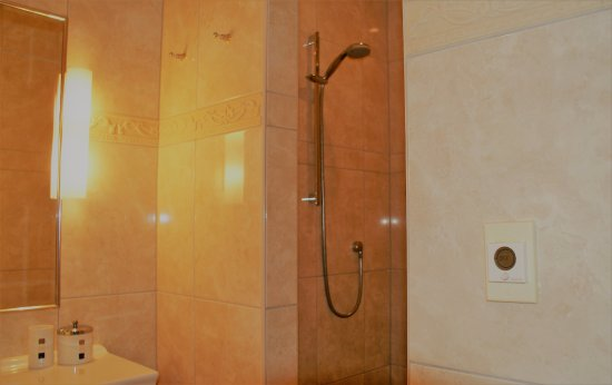 Chalet Eiger: Walk in Showers in all Suites