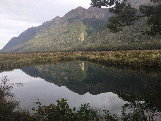 Fiordland National Park (Te Wahipounamu) : photo3.jpg