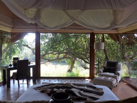 Sanctuary Makanyane Safari Lodge : Room 5 View - we saw hippos from here!