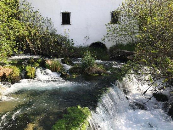 Molino del Santo: photo1.jpg