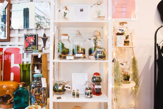 Olinda Collective: Terrariums by Patch House Designs