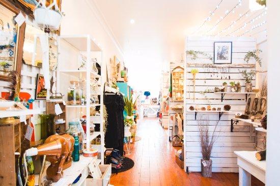 Inside Olinda Collective