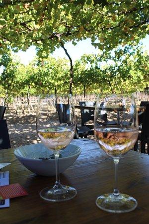 Calitzdorp, Sydafrika: De Krans Wines - Rose Pinotage - amazing wine