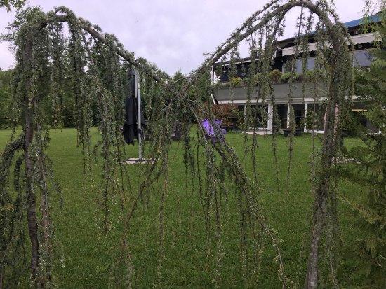 Ternate, Italy: Montelago Hotel - Residence