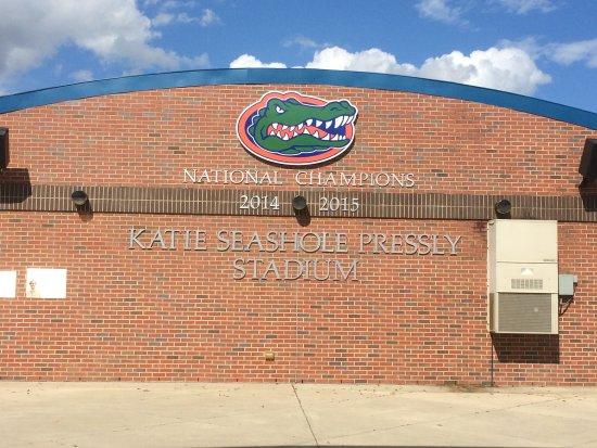 University of Florida : Soccer fans