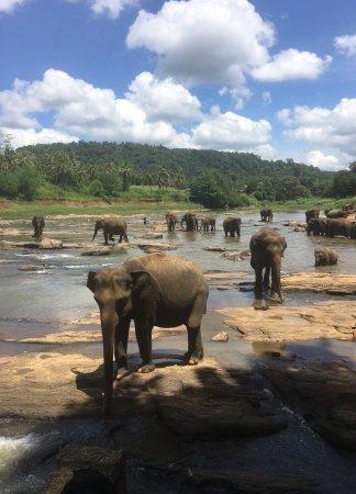 Hotel Elephant Bay: photo1.jpg