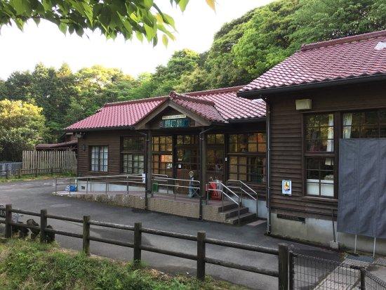 Onyoku Museum: 音浴博物館には16万枚のレコードが展示されています。複数のスピーカーで聴くことができます。