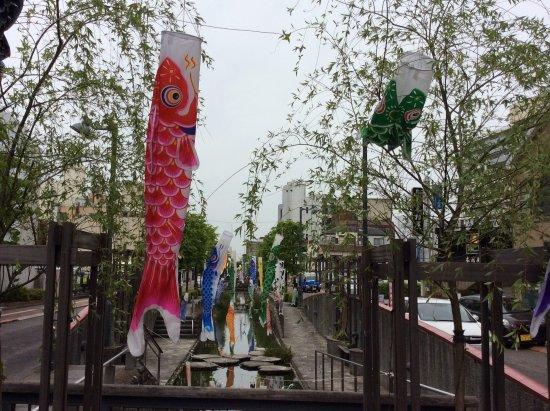Hoshikawa Symbol Road