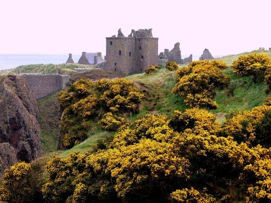 Stonehaven, UK: Il bellissimo castello