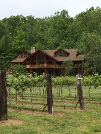 Hayesville, NC: owner's house with vineyard view