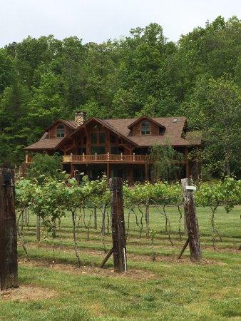 Hayesville, Βόρεια Καρολίνα: owner's house with vineyard view