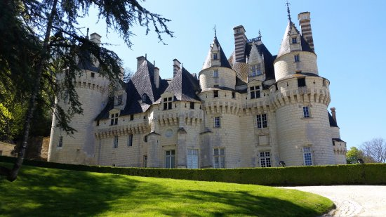 Rigny-Usse, France: Château