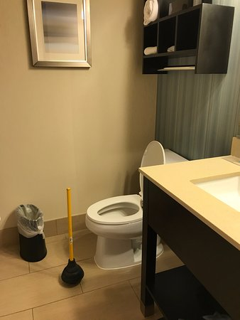 Hampton Inn Morgan Hill: Toilet plunger for Mother's Day