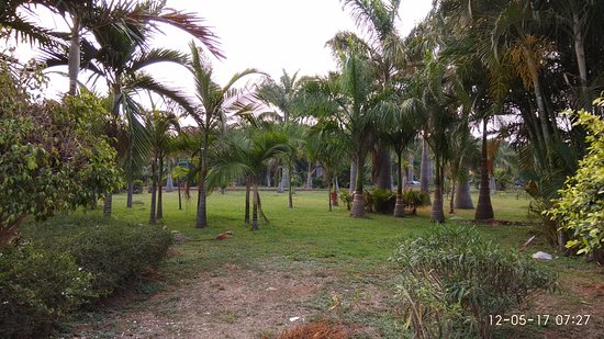 Jp Park Bengaluru What To Know Before You Go With