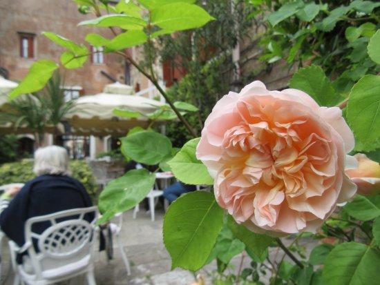 Hotel Al Sole: Garden