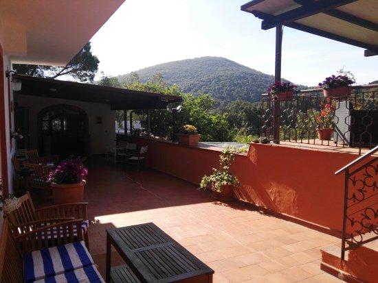 Hotel Etrusco: Hotel verdissimo!