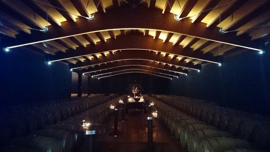 Pere Ventura: Blick in den Weinkeller