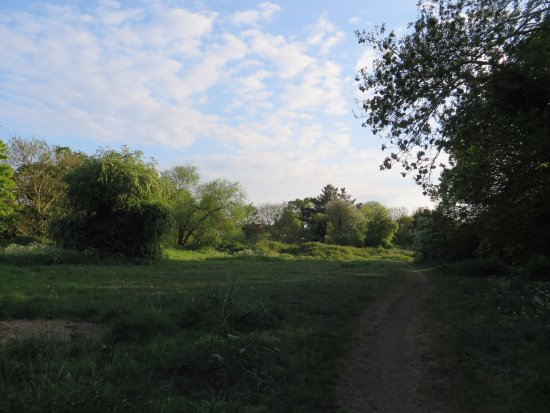 Kneller Gardens