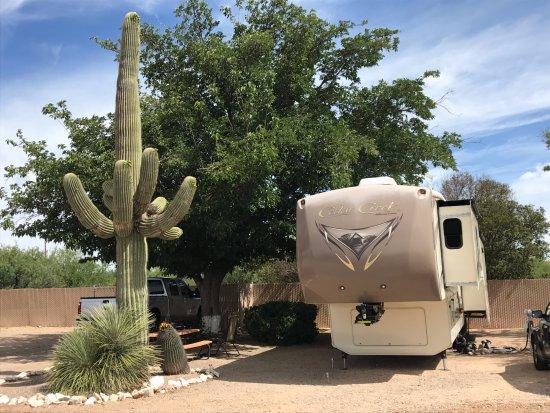 Benson, AZ: Campsite