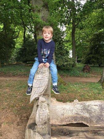 Winkworth Arboretum: photo1.jpg