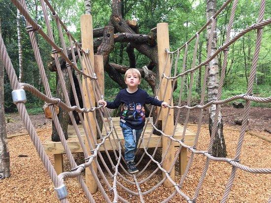 Winkworth Arboretum: photo2.jpg