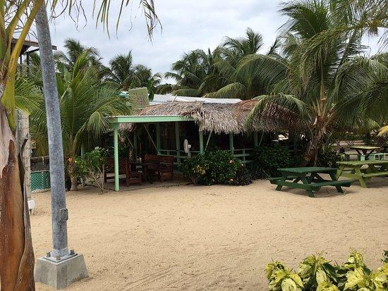 The Shak Beach Cafe: photo0.jpg