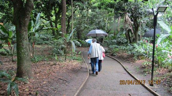 Jardin Botanico de Medellin: Il Giardino Botanico