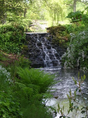 Minterne Gardens: Lots of ponds, streams and waterfalls.