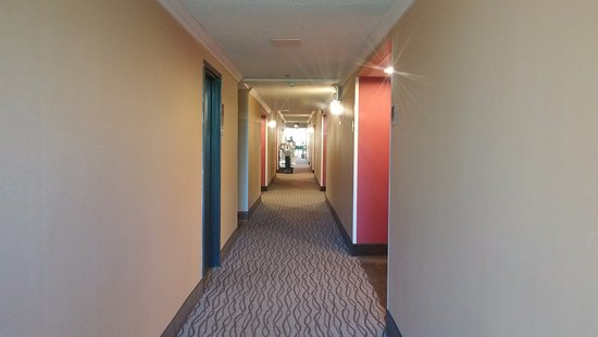 Arlington Heights, Илинойс: Clean bright hallways