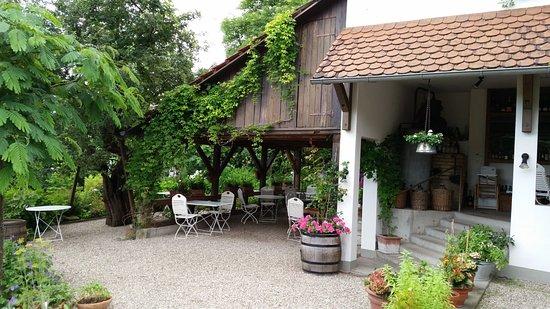 Kuppenheim, Germany: Garten