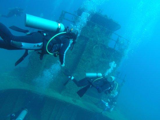 Utila, Honduras: Wreck dive
