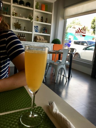 Palmer, Puerto Rico: mimosa
