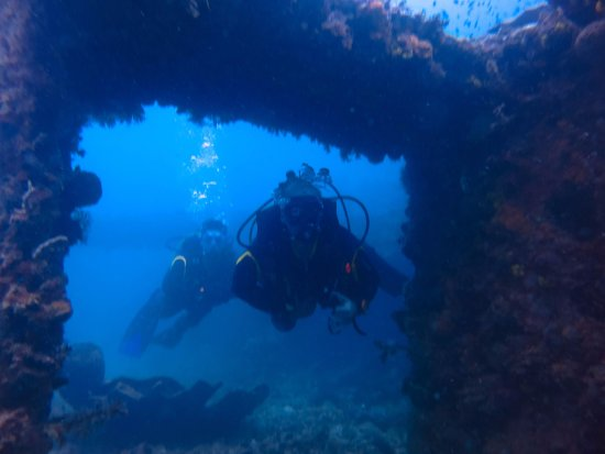 Rocksteady Dive Center: amazing experience