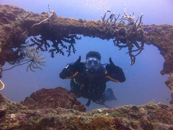Rocksteady Dive Center: amazing wrecks