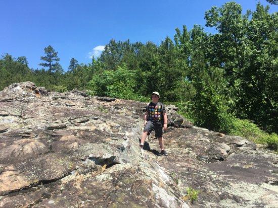 Morrilton, Арканзас: Rock area on seven hollows Trail